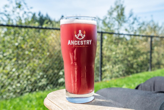 Ancestry Brewing