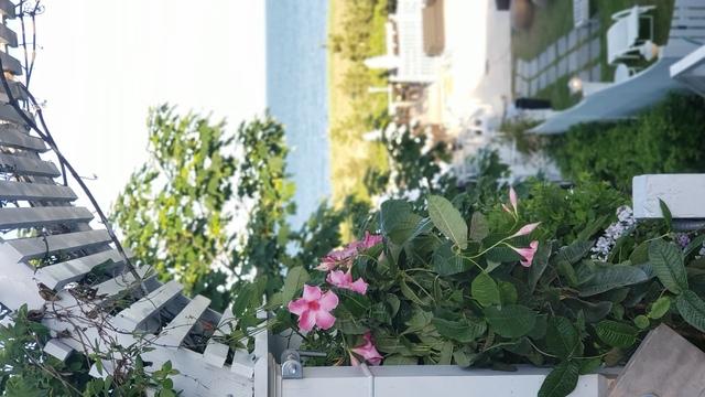 8. The Summer House Beachside Bistro